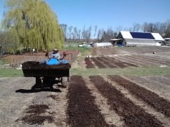 Bryn bringing on the compost for spreading on our beds