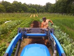 Spreading compost onto the fields