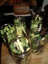 Preparing Dilly Beans
