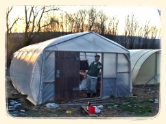Our double-wall inflated hoophouse!