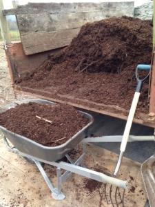 Compost, compost, compost