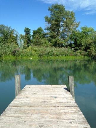The serene pond.