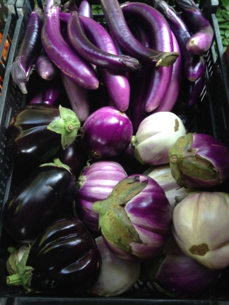 The eggplant are finally producing at least a bit more, so get ready to see more of these in the coming weeks!  We have three varieties.  The bigger eggplants are great for things like pasta, pizza, or baba ghanoush, while the thinner eggplants are great for stir frys or simple sauteed dishes.