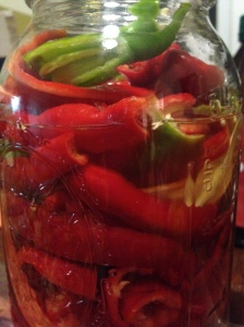 Peppers chopped and ready to be fermented for some winter eating