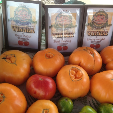 Not to brag or anything, but our tomatoes won LOTS of awards at the market this week!