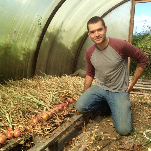 One of our fabulous CSA members helping out with our (rather disappointing this year) onion harvest!  Getting to know our members is one of our favorite parts of being a CSA farm, and helping hands are always welcome!