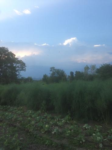 Last week's looming storm clouds