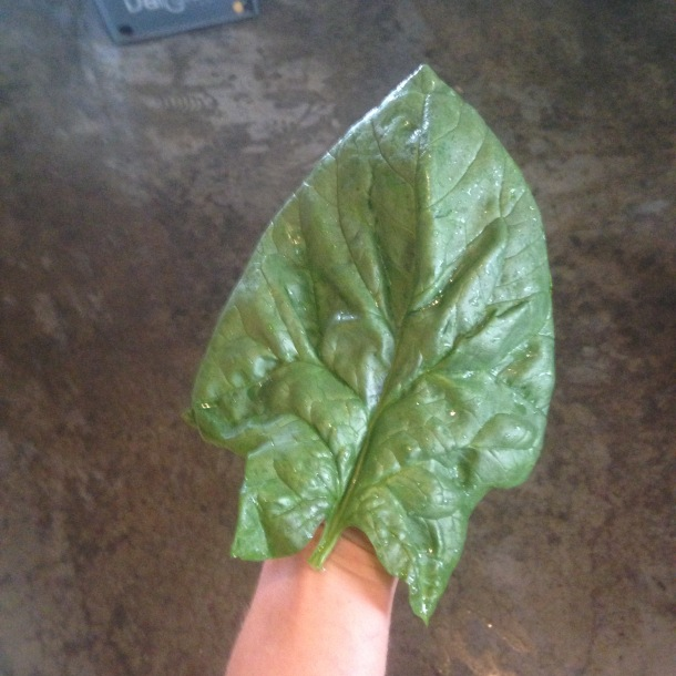 Who needs scissor-hands when you can have spinach-hands?!