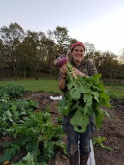 This huge Purple Top Turnip has been loving the Four Winds soil and plenty of space to GROW!